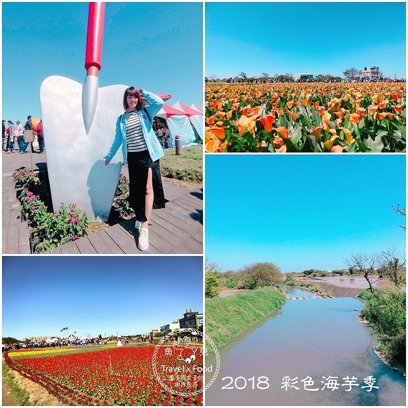 2018 桃園彩色海芋季 @魚兒 x 牽手明太子的「視」界旅行