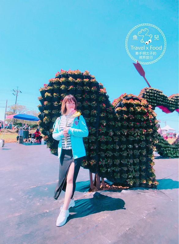【遊】與你相芋|2018 桃園彩色海芋季 @魚兒 x 牽手明太子的「視」界旅行
