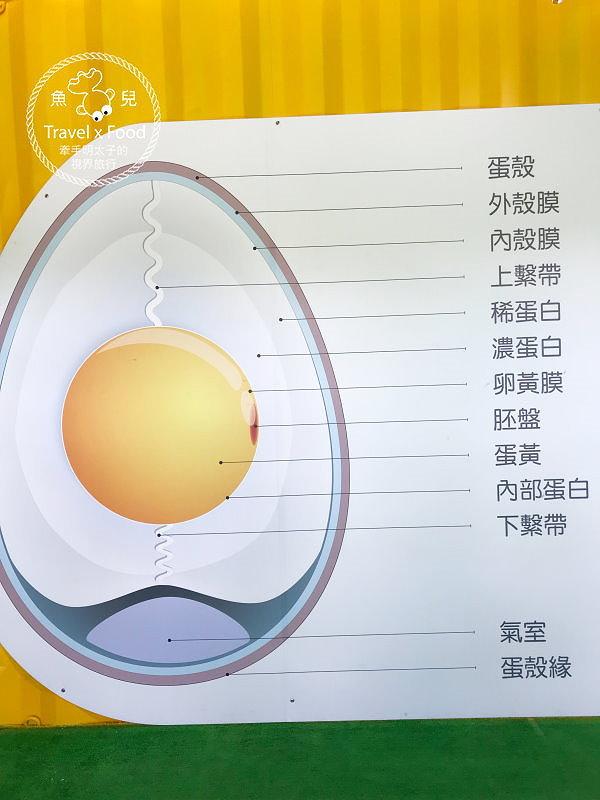 【展】2018淡水蛋蛋節:扭蛋、吃蛋、玩蛋,從早玩到晚,一起來搗蛋! @魚兒 x 牽手明太子的「視」界旅行