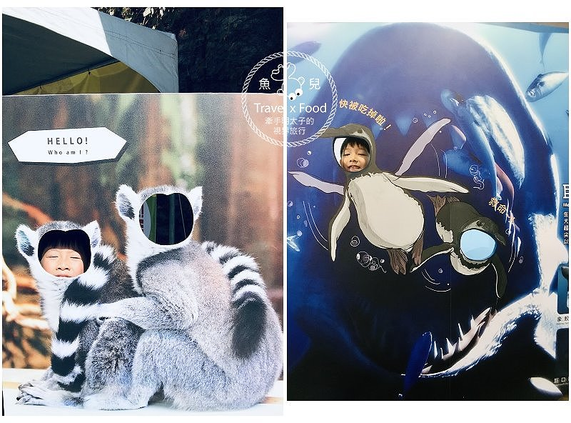 【展】變變變|MOVE生物體驗展 @魚兒 x 牽手明太子的「視」界旅行