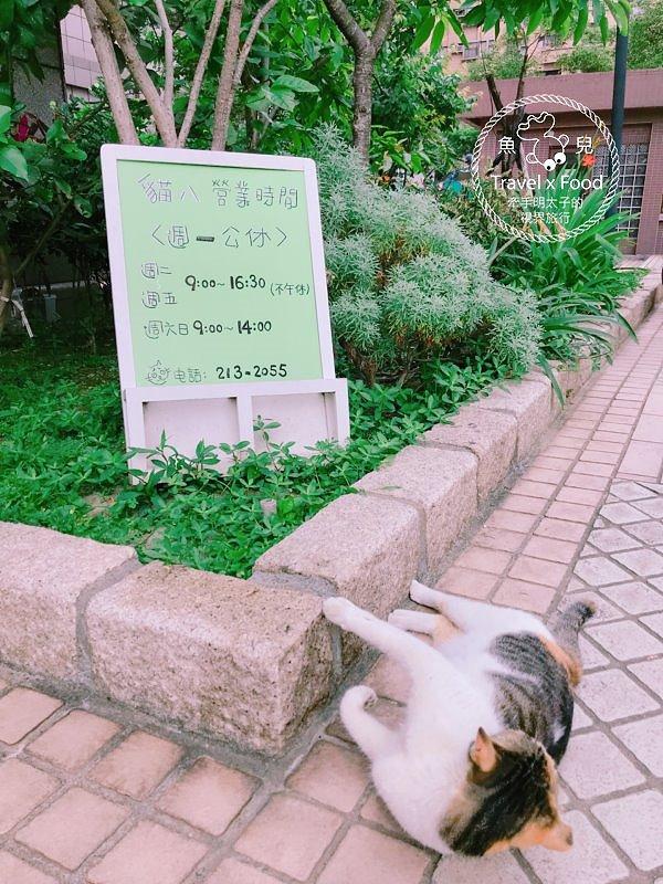 貓八涼麵|辛辣夠味,晚來買不到 @魚兒 x 牽手明太子的「視」界旅行