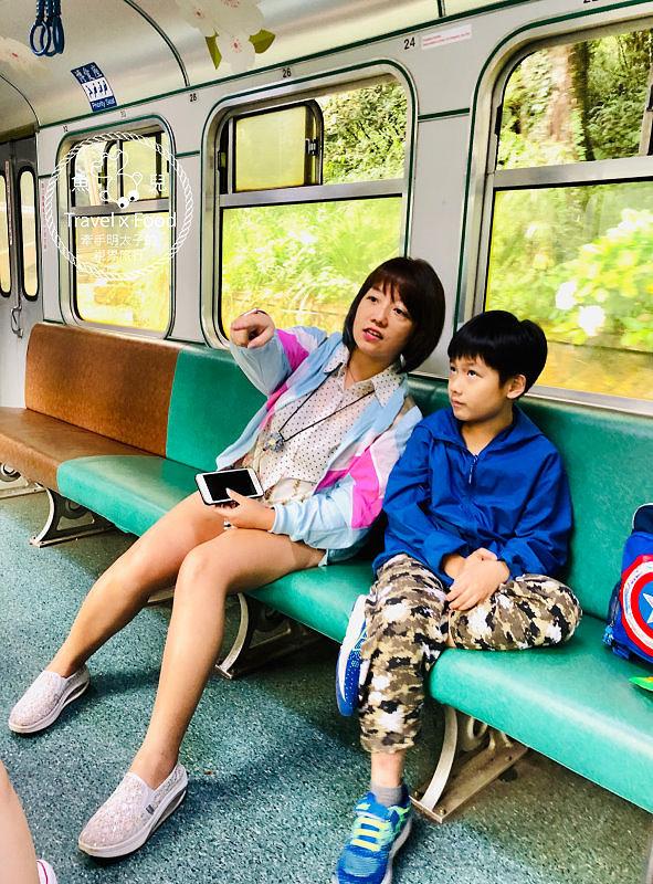 阿里山森林遊樂區|美好的消暑盛地,二訪火車站及神木遺跡,找尋過往的童年記憶 @魚兒 x 牽手明太子的「視」界旅行
