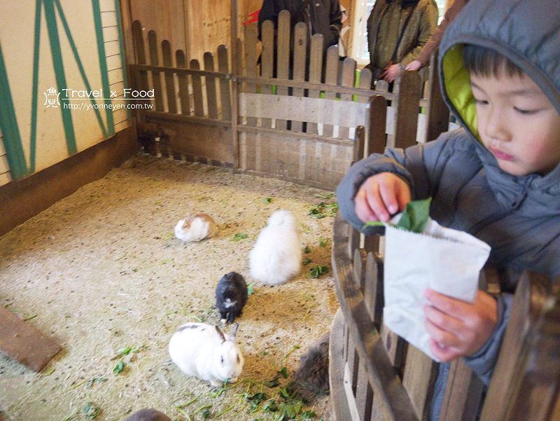 飛牛牧場|三生三育的生活與休閒,陪伴孩子的童年時光 @魚兒 x 牽手明太子的「視」界旅行