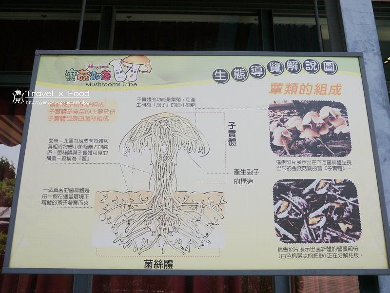 魔菇部落休閒農場|菇菇生態、種菇DIY、養殖體驗、美食與文化 @魚兒 x 牽手明太子的「視」界旅行