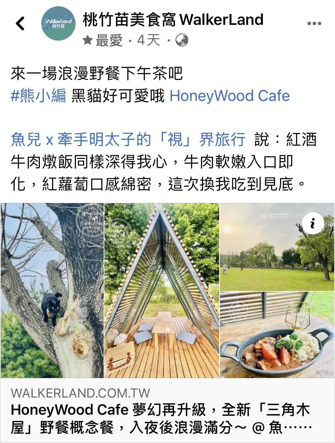 HoneyWood Cafe 夢幻再升級,全新「三角木屋」野餐概念餐,入夜後浪漫滿分~ @魚兒 x 牽手明太子的「視」界旅行