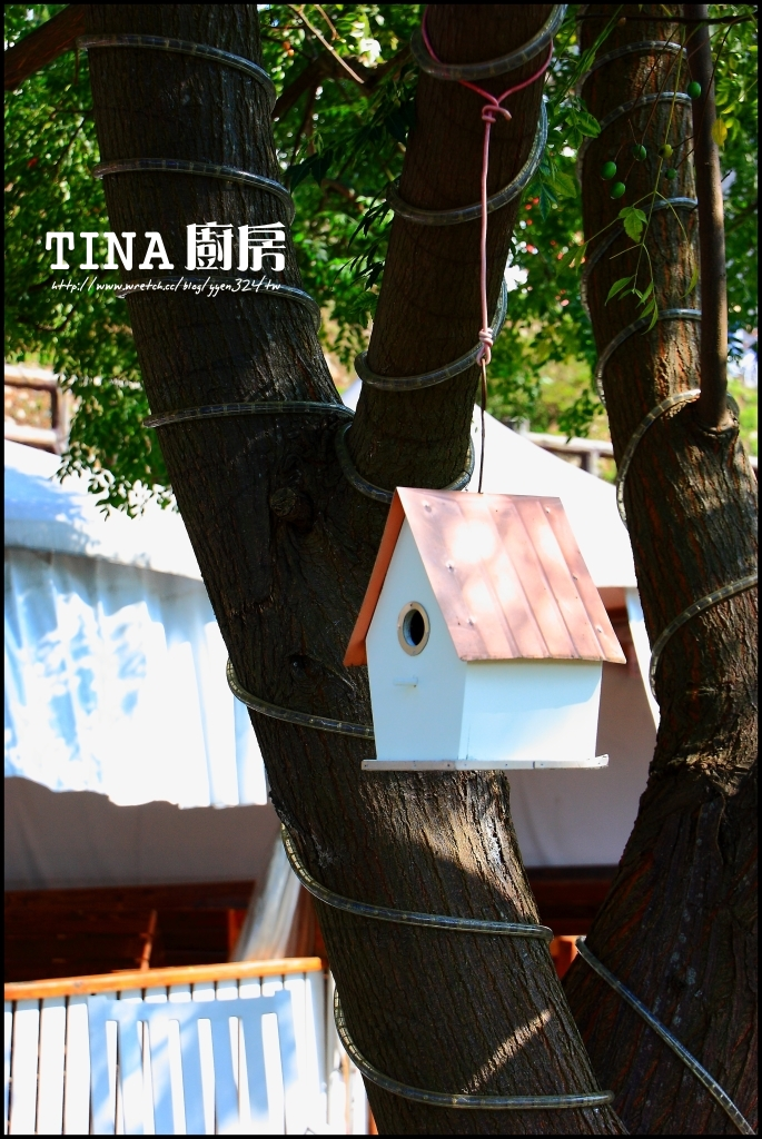 大溪。TINA廚房 @魚兒 x 牽手明太子的「視」界旅行