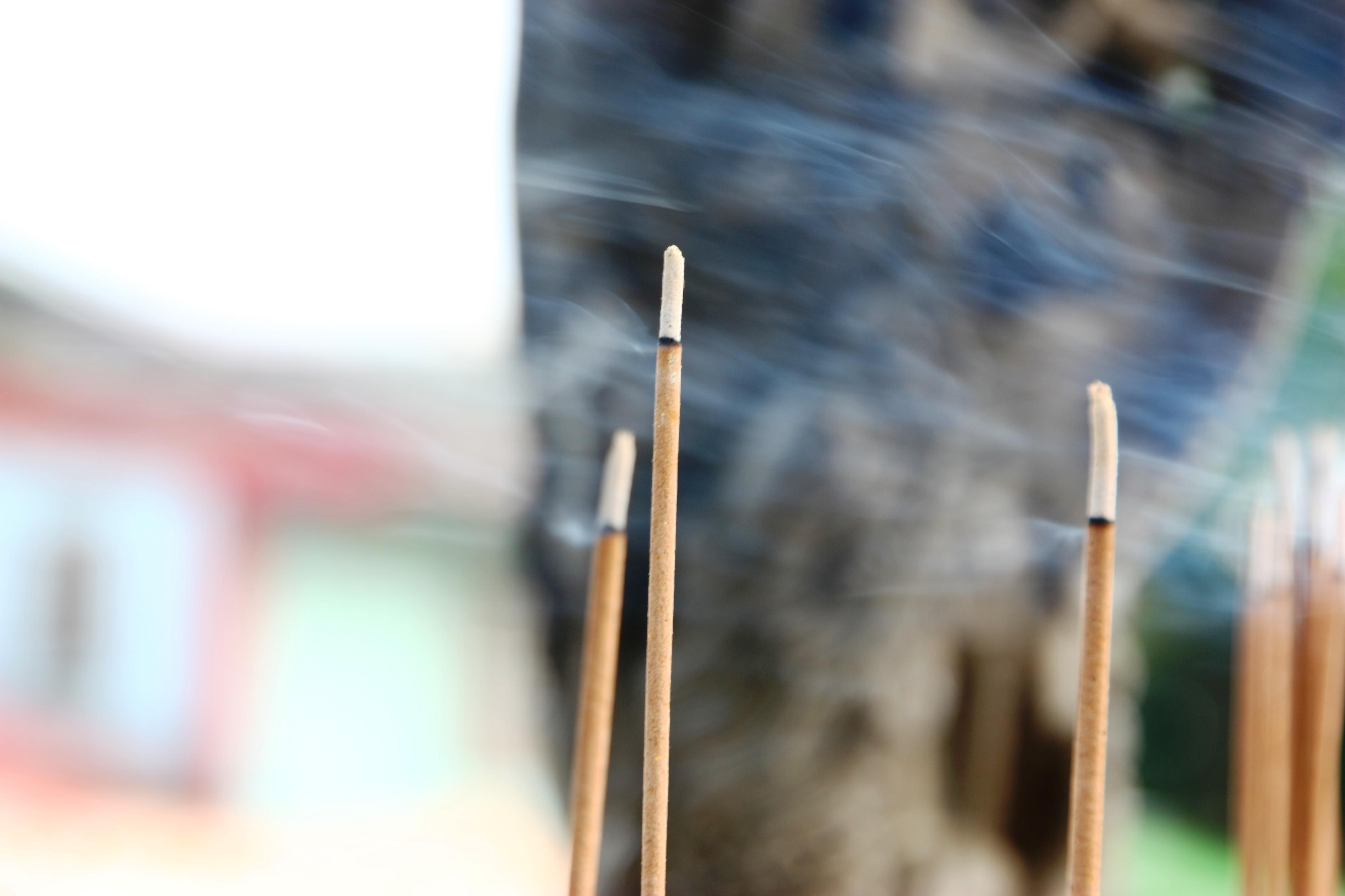 【攝】廟宇 @魚兒 x 牽手明太子的「視」界旅行
